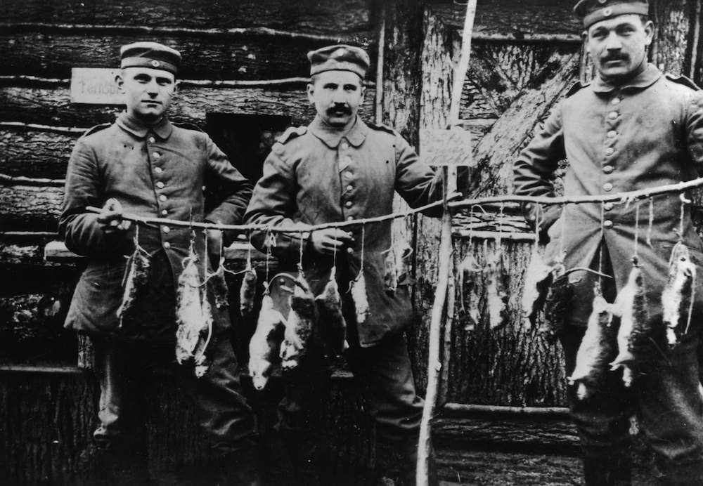 Three German soldiers display rats killed in their trench the previous night. (Photo by Faber/Getty Images)