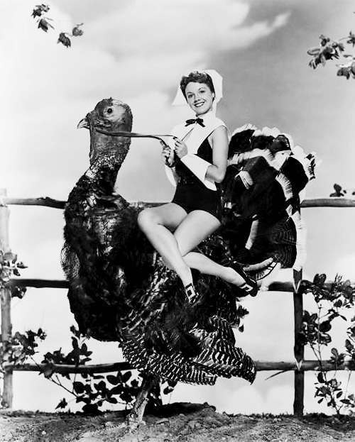 pin up thanksgiving