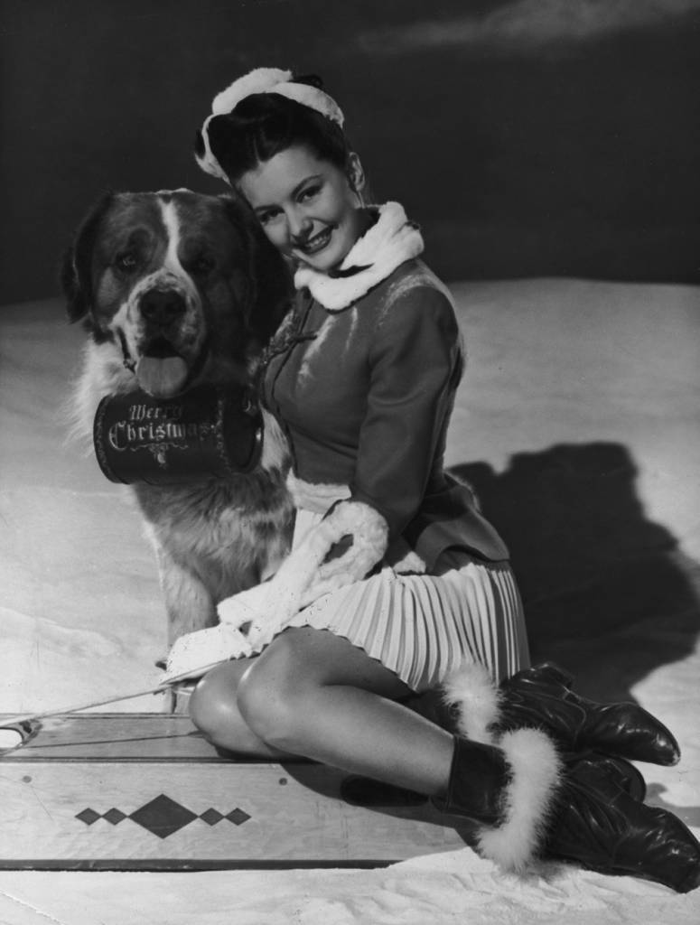 26th September 1946: American actress and dancer Cyd Charisse with a St Bernard dog, which is equipped with a barrel of brandy marked 'Merry Christmas'. (Photo by Keystone/Getty Images)