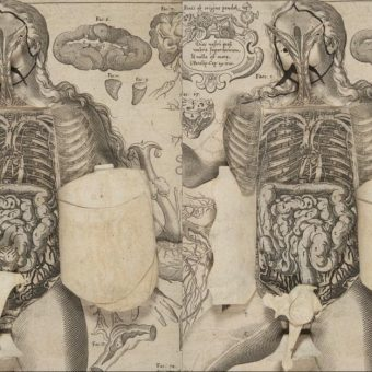 Highlights From A 1661 Anatomical Pop-Up Book