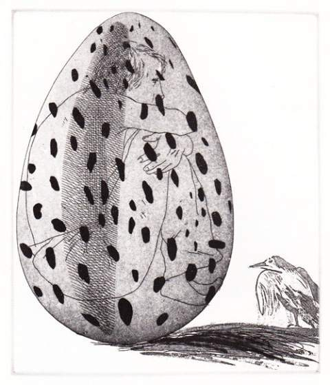 'The boy hidden in an egg' (The Little Sea Hare)