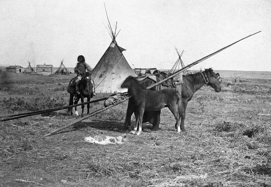 First Nations camp near first Hudson's Bay Company store at Fort Calgary, Alberta. Date: [ca. 1886]
