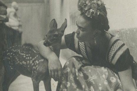Frida with Deer, 1940