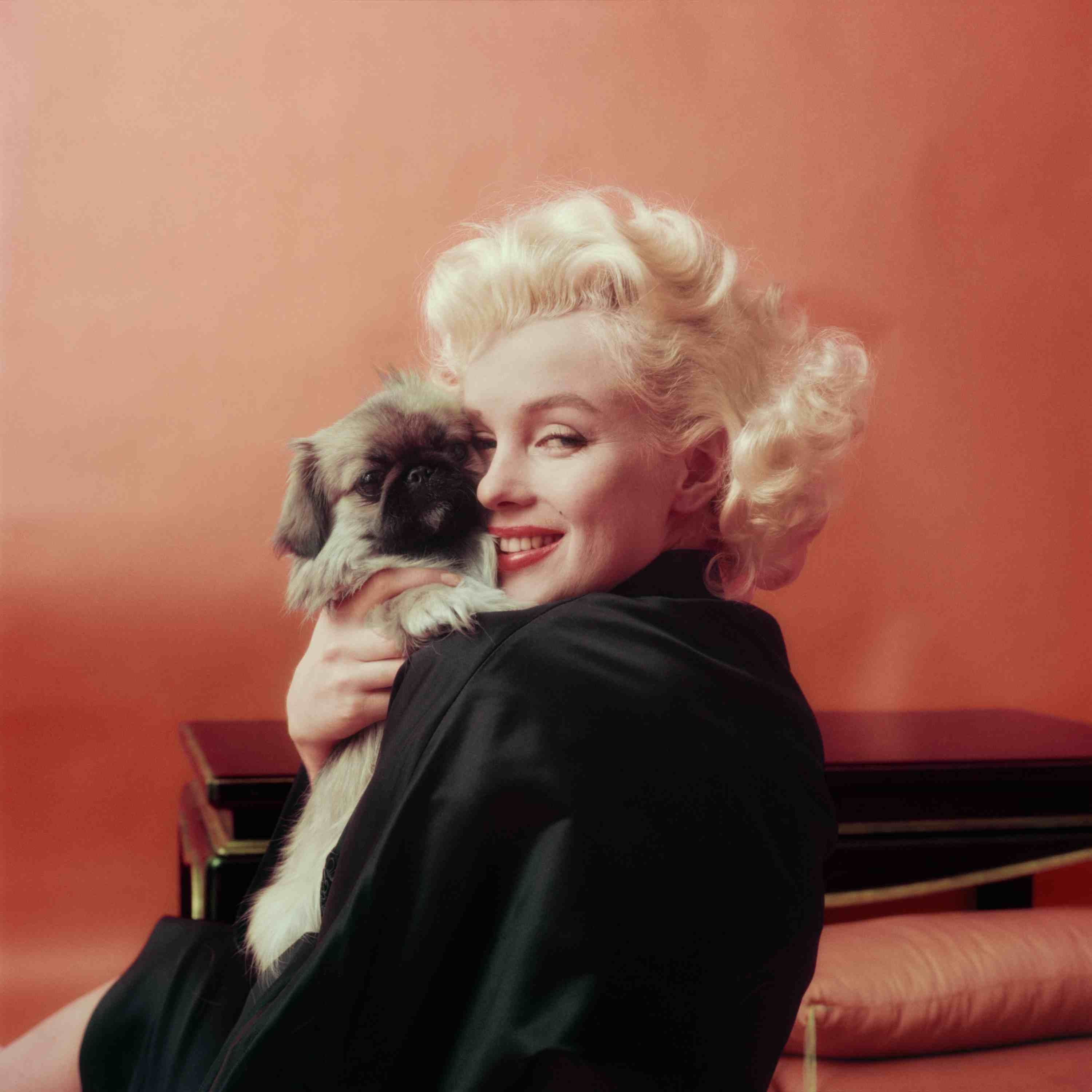Marilyn Goes Oriental With A Pekenese Dog, NY, 1955 © Milton H Greene