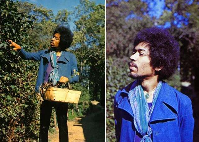 ast photos of jimi hendrix