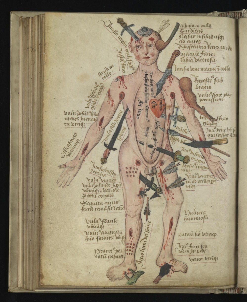 Wound Man And Other Illustrations From Pseudo-Galen, Anatomia (14th ...