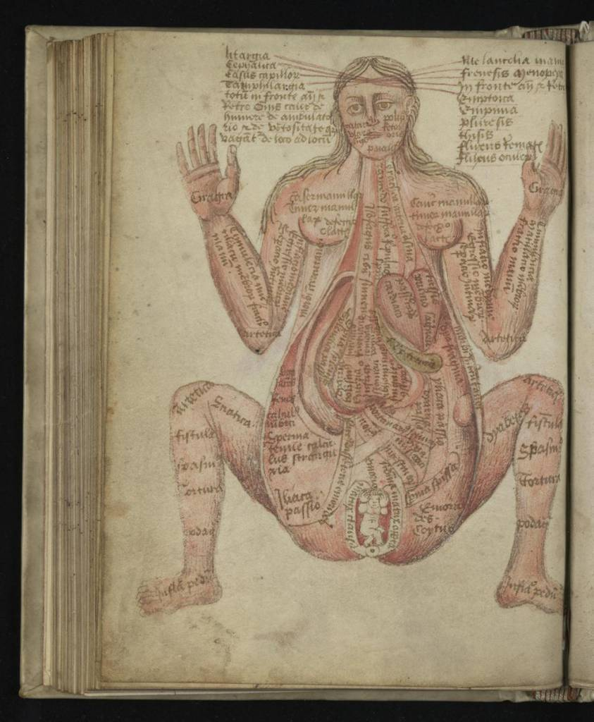 King Of Cars >> Wound Man And Other Illustrations From Pseudo-Galen, Anatomia (14th Century) - Flashbak