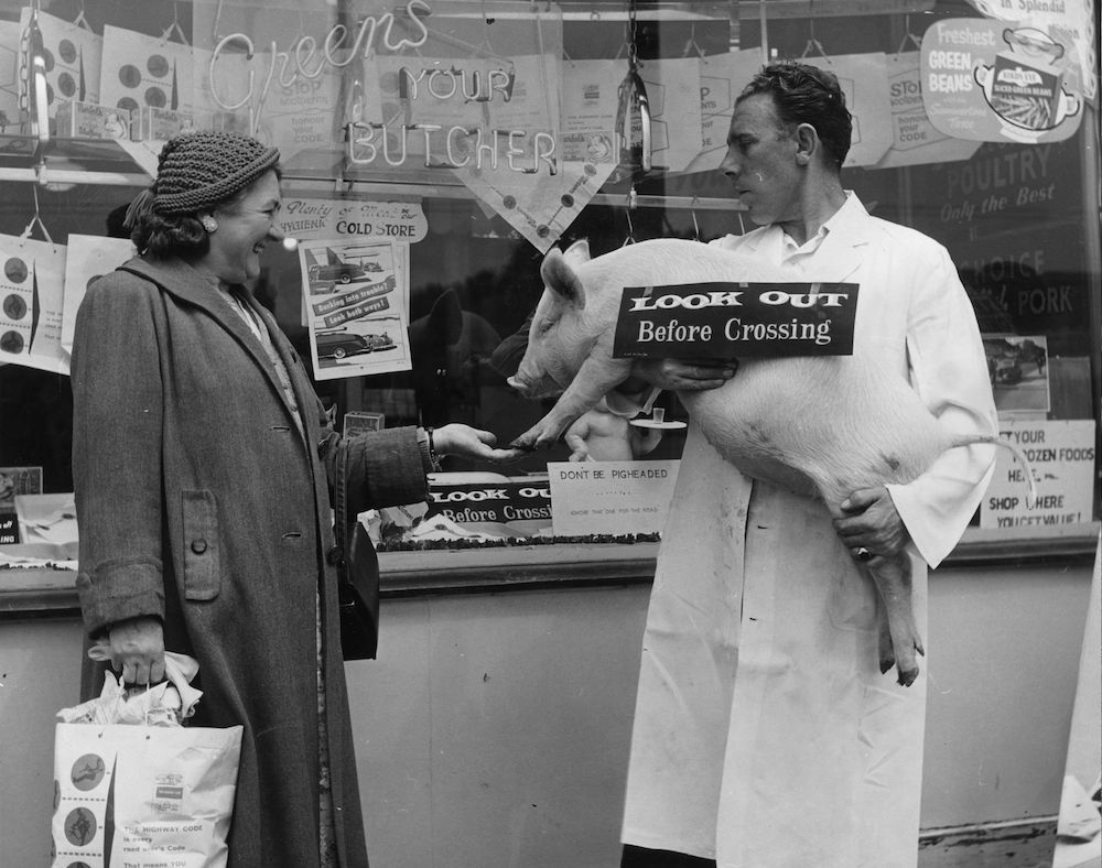Mr R C Green introduces a small pig to a customer outside his butcher's shop in Uxbridge Road, Hayes, Middlesex. Mr Green is assisting in a local road safety campaign and has filled his windows with relevant slogans. (Photo by Fred Morley/Getty Images)