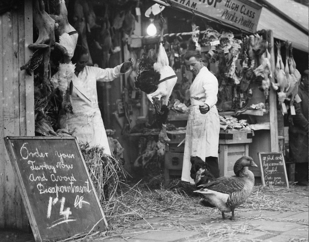 23rd December 1931: Billy the goose, who made himself so much at home with the butcher's family that he was saved from the fate of Christmas, struts around below the corpses of his less fortunate brethren. (Photo by Fox Photos/Getty Images)