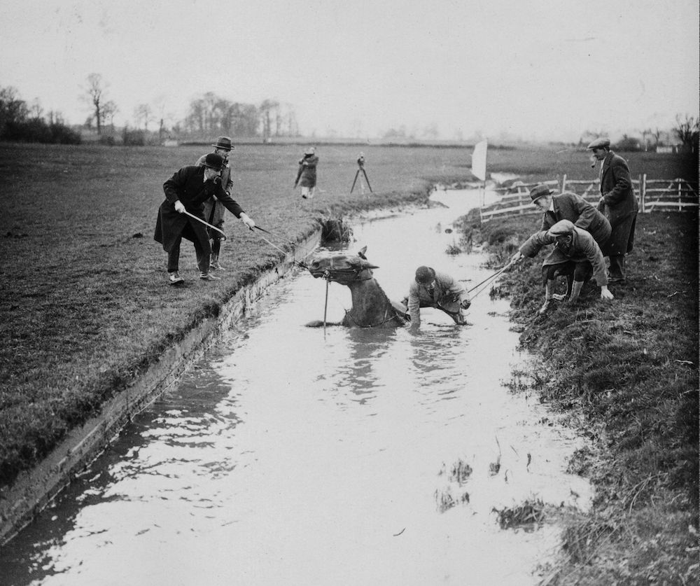 7th April 1936:  Grafton Hunt Hunter Trials at Langford Farm, Greens Norton, Towcester, Northamptonshire. Captain T G Du Buisson , Secretary of the Grafton Hunt being rescued after a fall from 'George' in the Member's Trial.  (Photo by Harrison /Topical Press Agency/Getty Images)