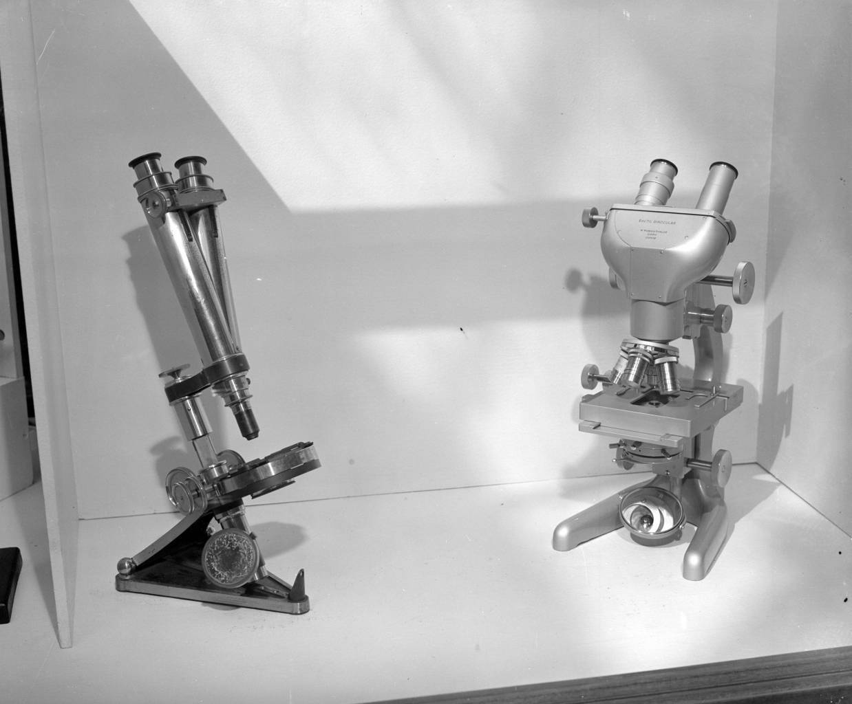 7th August 1950:  Two microscopes, one of which was presented to the French scientist Louis Pasteur by Whitbreads Brewery.  (Photo by Topical Press Agency/Getty Images)