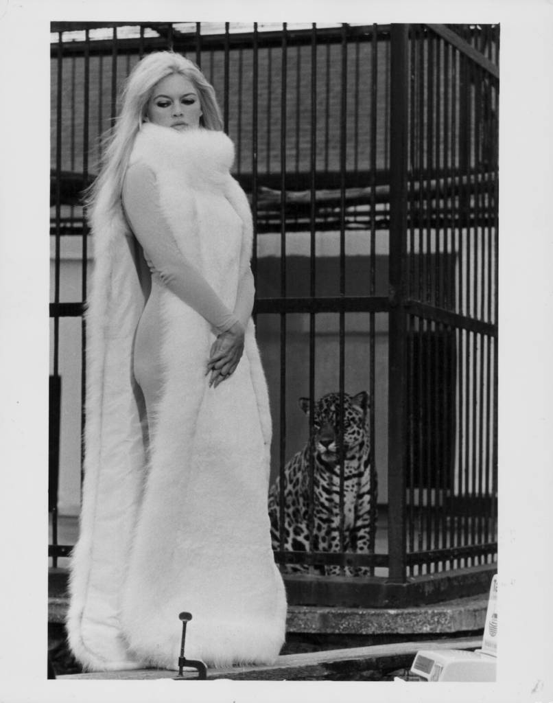 Actress Brigitte Bardot modeling a fur dress at London Zoo, September 15th 1966. (Photo by R. Jones/Central Press/Getty Images)