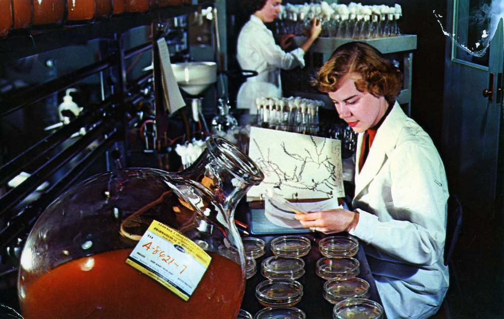 Lederle Laboratories Pearl River NY American Cyanamid Co. Today's biologist studies an endless supply of organisms derived from soil and other sources in their search for new and better antibiotics. postcard production sample, Koppel Color Cards