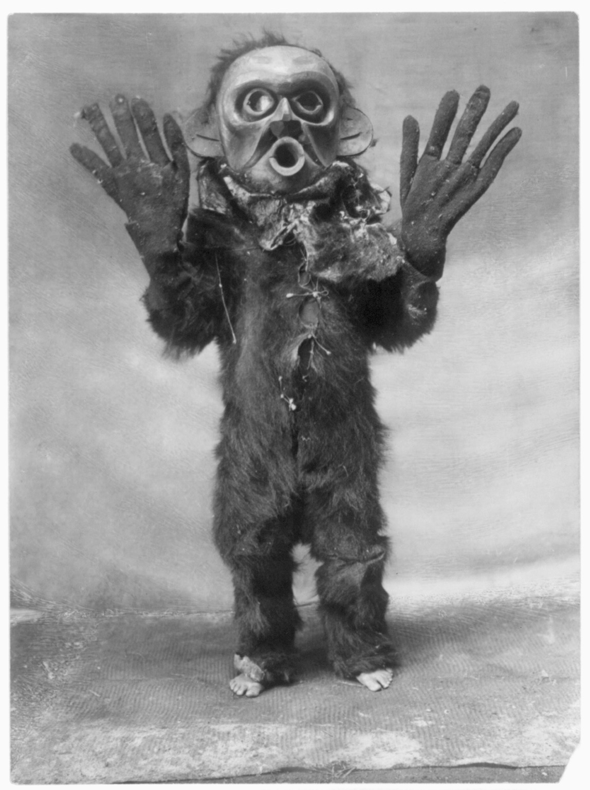 "Title Hami--Koskimo Summary Koskimo person wearing full-body fur garment, oversized gloves and mask of Hami (""dangerous thing"") during the numhlim ceremony. Contributor Names Curtis, Edward S., 1868-1952, photographer Created / Published c1914 November 13."