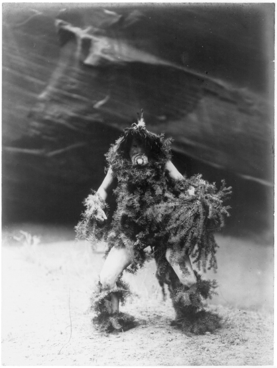 "Title Tonenili--Navaho Summary Navajo man bedecked in hemlock boughs and mask of a clown associated with the mischievous rain god Tonenili, ""Water Sprinkler"". Contributor Names Curtis, Edward S., 1868-1952, photographer Created / Published c1905 January 6."