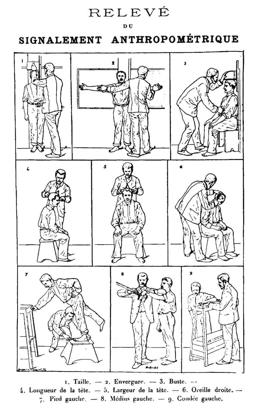 Bertillon_-_Signalement_Anthropometrique