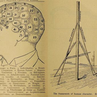 You Need Your Head Examined: Pages from 'Vaught's Practical Character Reader' (1902)