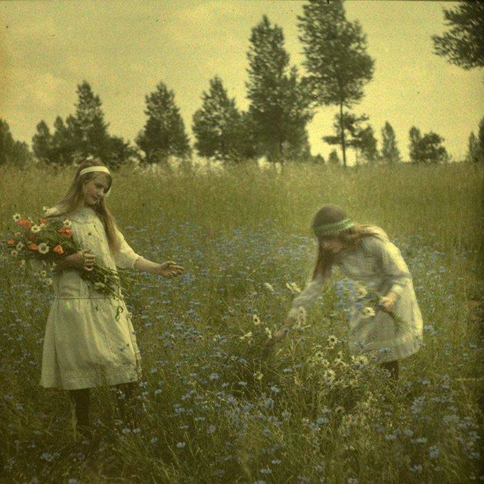 Alfonse Van Besten, Two girls picking cornflowers c. 1912