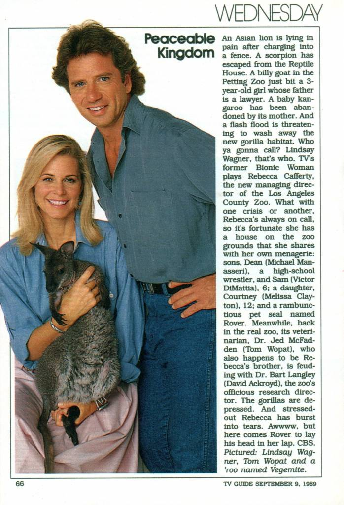 TV Guide Fall Preview 1989 21