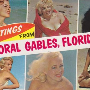 Florida Sex Stories With Bettie Page And Horny Alligators: Mid-Century Postcards