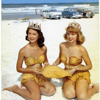 Old Florida Postcards With Bettie Page And Horny Alligators
