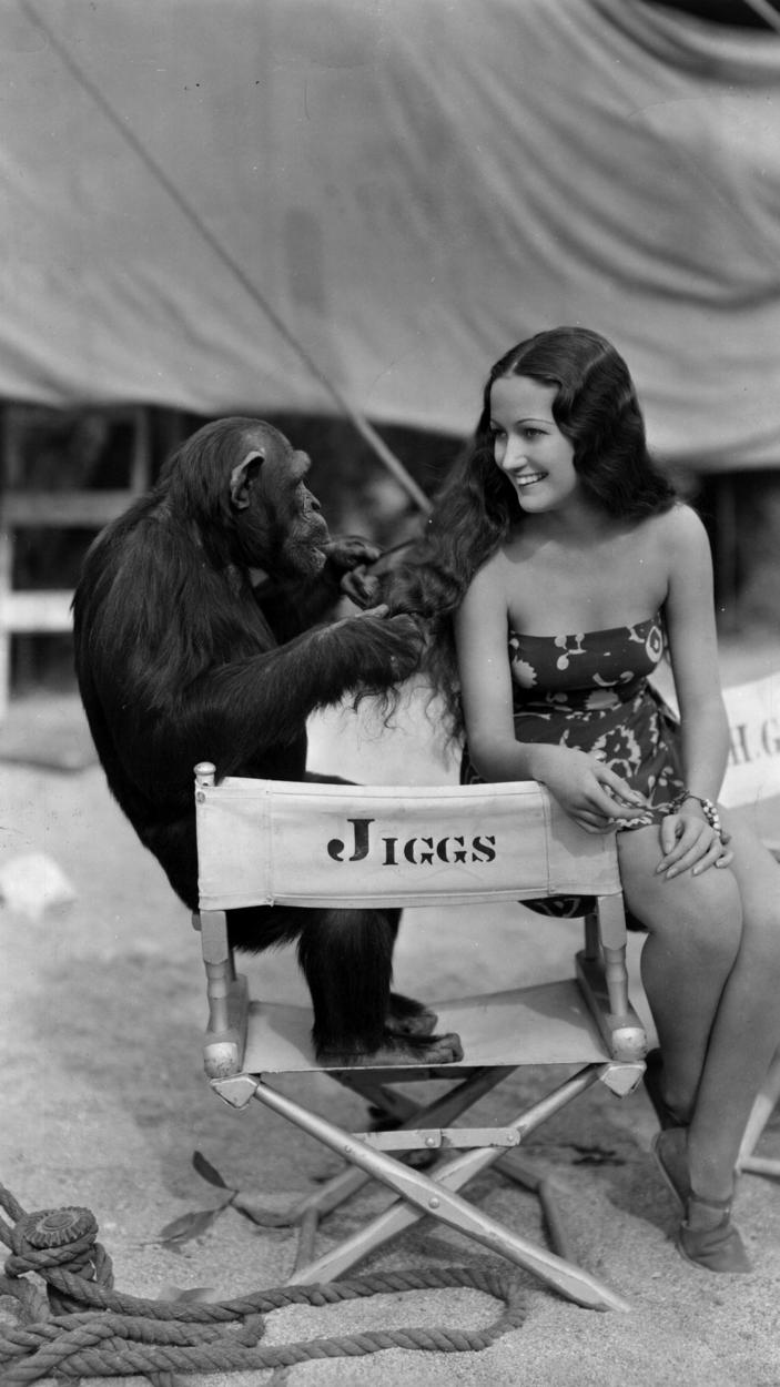 Circa 1937- Dorothy Lamour, playing with %22Jiggs%22 the chimpanzee, while on location in Palm Springs for Her Jungle Love, directed by George Archainbaud