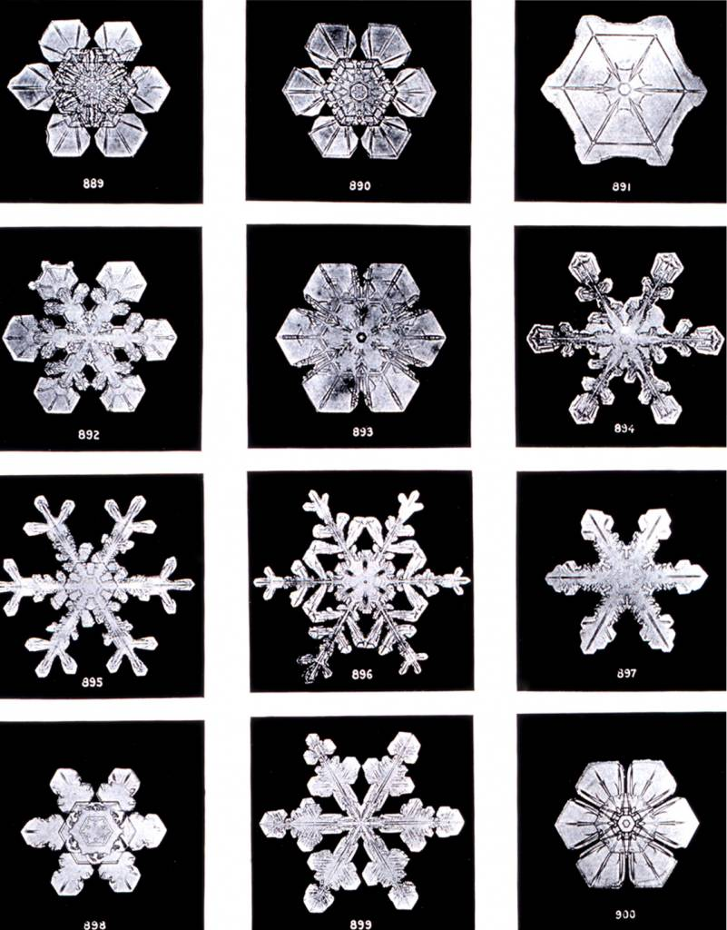 "Wilson Bentley - Plate XIX of ""Studies among the Snow Crystals ... "" by Wilson Bentley, ""The Snowflake Man."" From Annual Summary of the ""Monthly Weather Review"" for 1902."