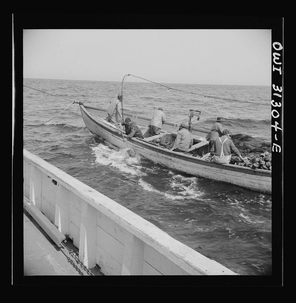 On board the fishing boat Alden, out of Gloucester, Massachusetts. Fishermen chasing a school of mackerel