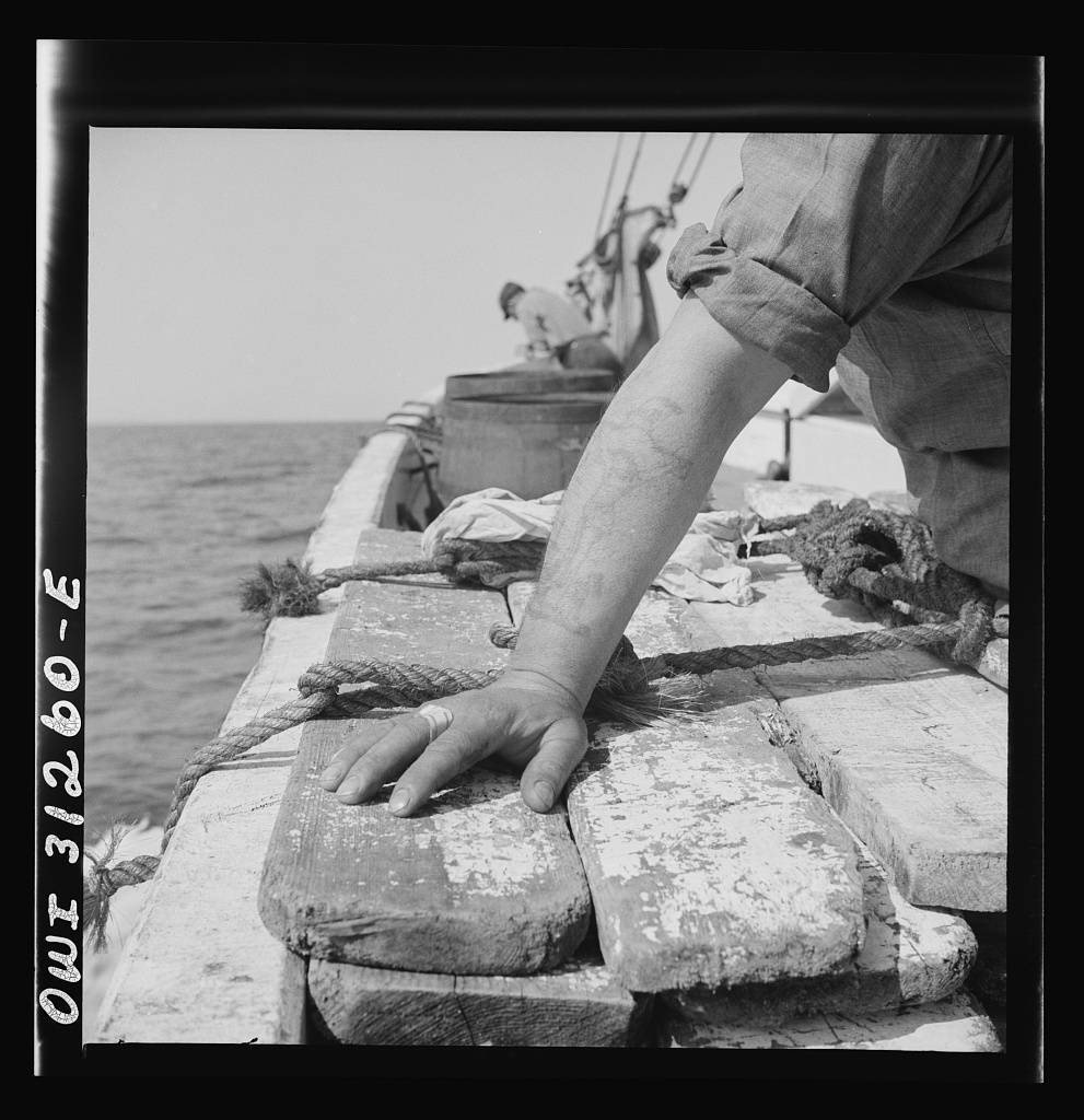 On board the fishing boat Alden out of Gloucester, Massachusetts. The tattoed arm of a fisherman