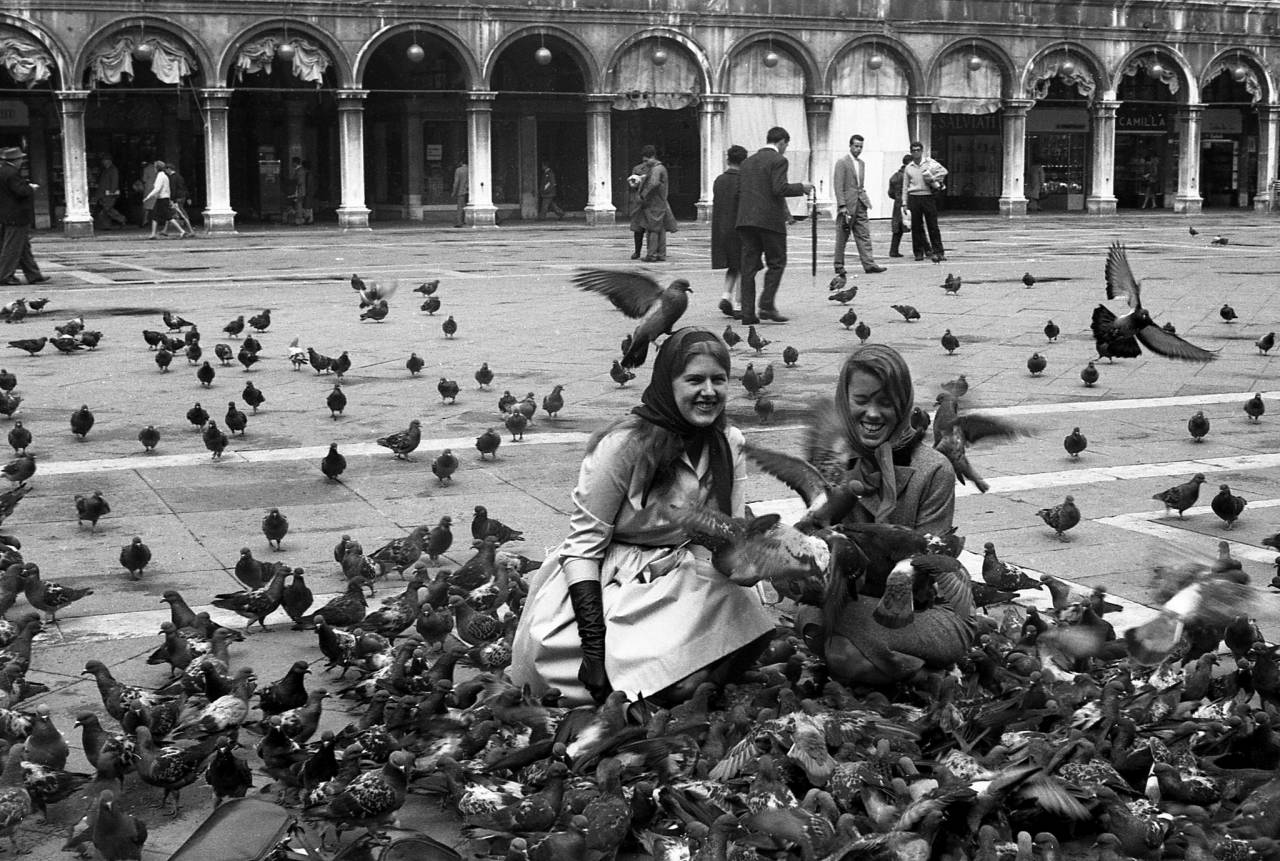 Venice pigeons scenes 1960s Italy St Mark's Square