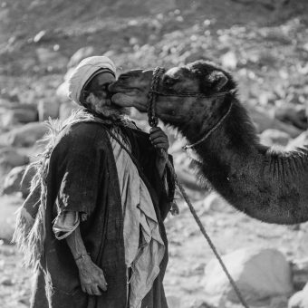 Stirring 1898 Portraits of Bedouins By The Evangelical American Colony Photo Department