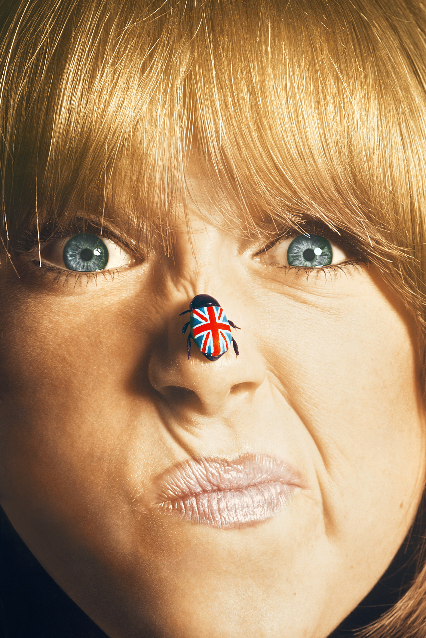 Birds of Britain Pattie Boyd1