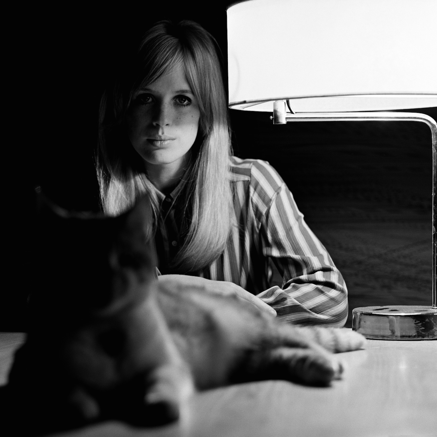 Birds of Britain Marianne Faithfull