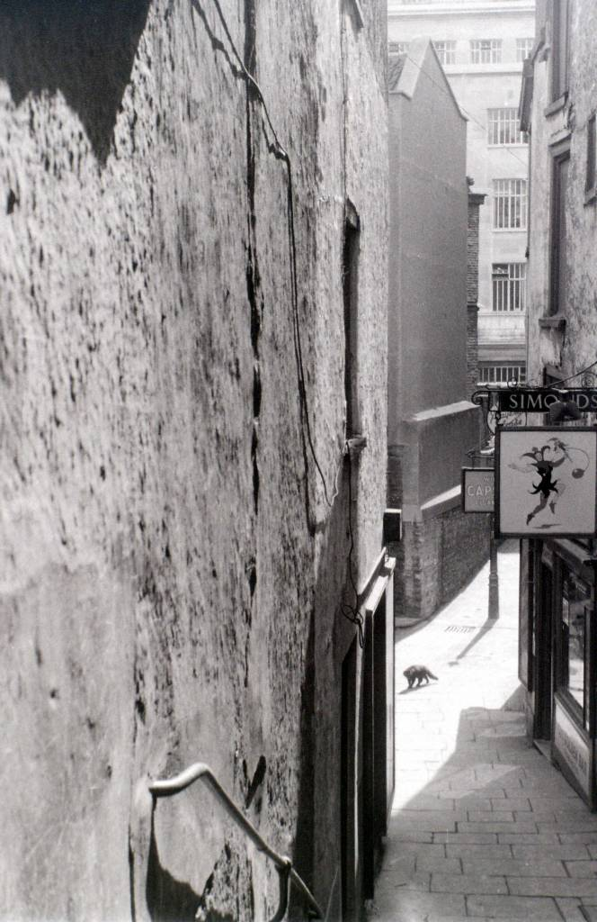 Christmas Steps, Bristol, 30 July 1958