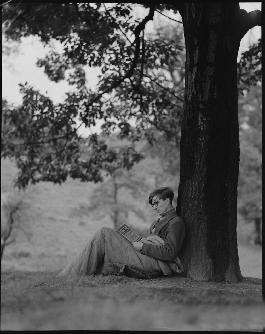 Colin Wilson reading by tree 1956