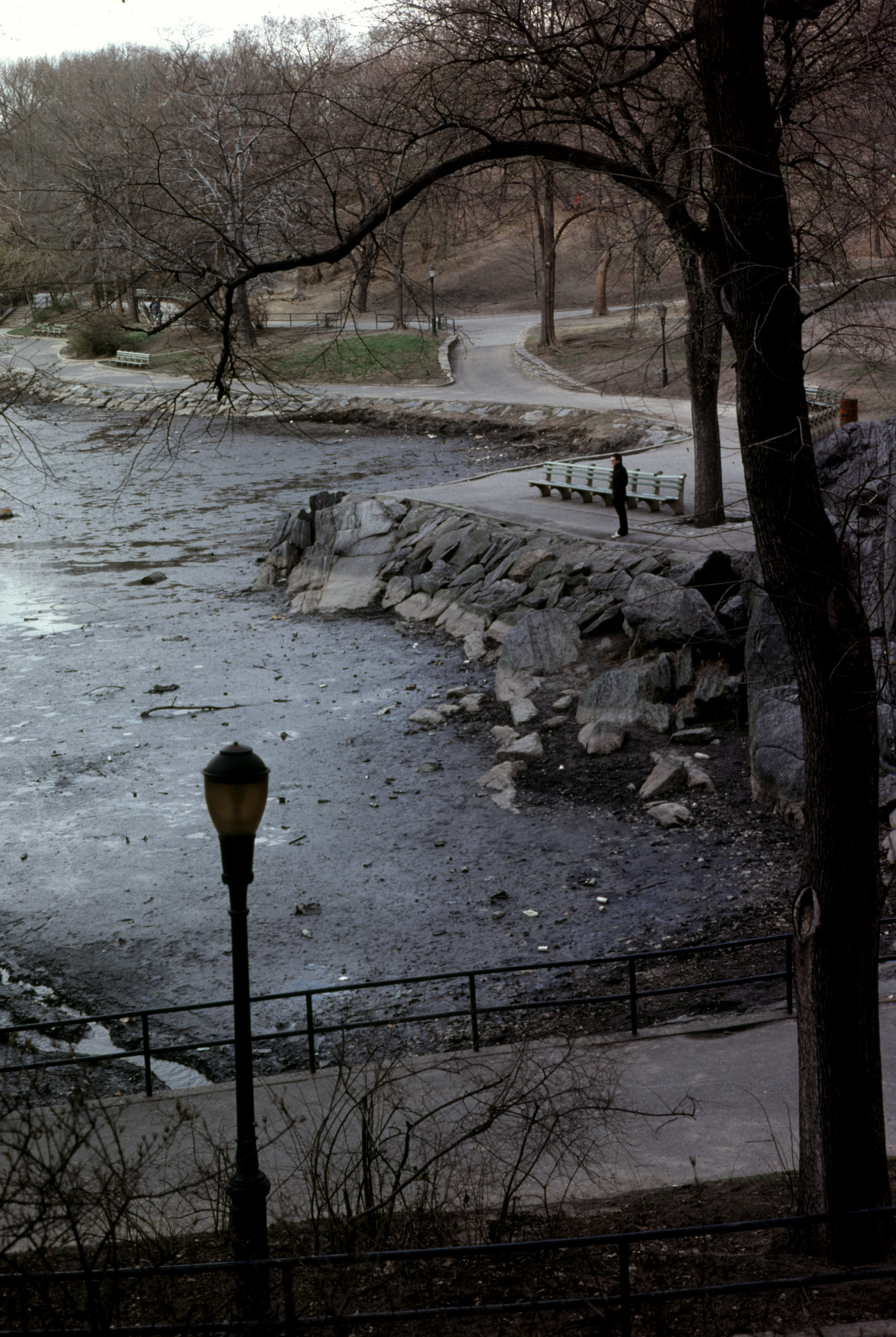 New York City 1979 - Man in Central Park thinking about something