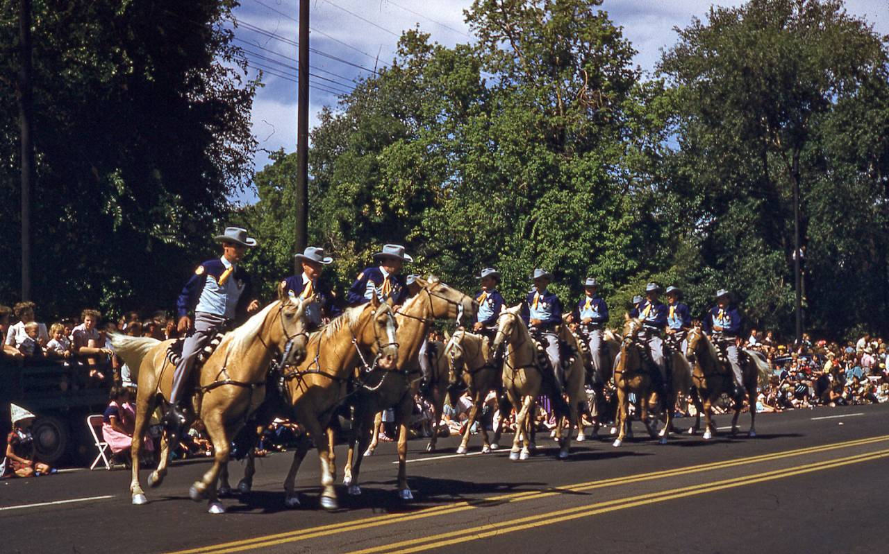 Palomino Horses, Pioneer Day's Parade, Salt Lake City, 1958