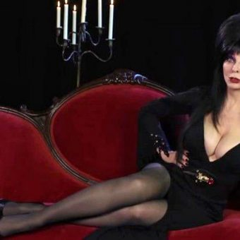 Elvira: An Illustrated History of The Mistress of the Dark
