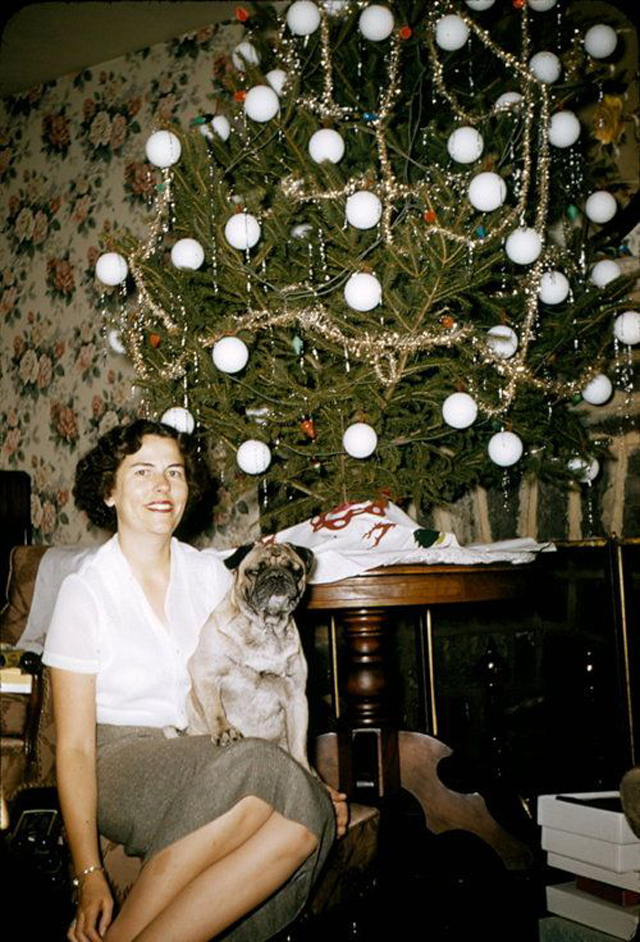 Mid Century Women Enjoying Real Christmas Trees