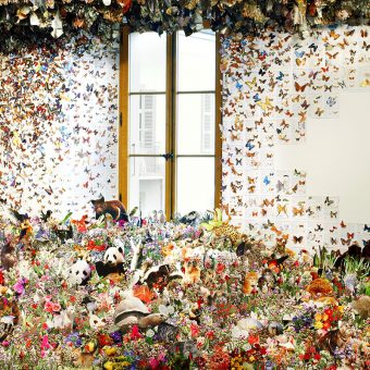 Life Escapes Books In An Explosion Of Flora And Fauna