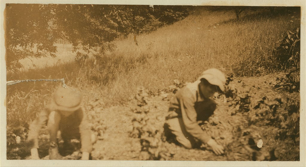 """Rural Accident. Four weeks after the accident Clinton was using his remaining hand to help in the farm work as best he could. His mother said: """"Now we will have to educate him."""" See Hine Report, August 1915."""