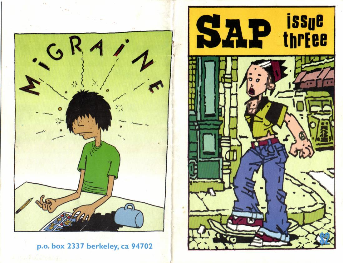 SAP issue 3