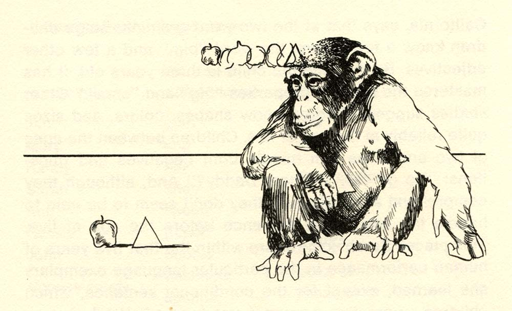 Why Chimps Can Read 1976 c