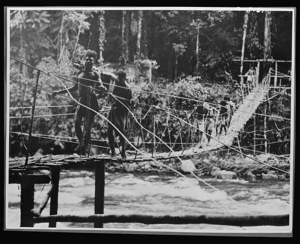 Natives aid Allied drive in New Guinea jungles. Permanent bridges are rare, even in the most settled parts of the island, because of fast rising streams. When bridges are washed out, however, the natives quickly build another so that supplies and wounded Allied troops may be transported to and from the fronts