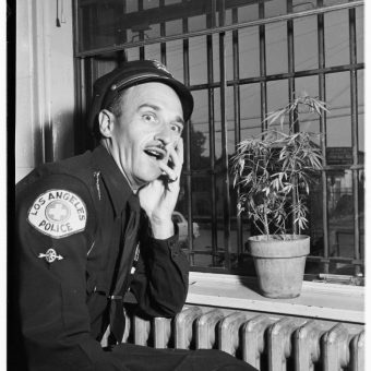 Marijuana In Van Nuys Jail, Los Angeles, 1951