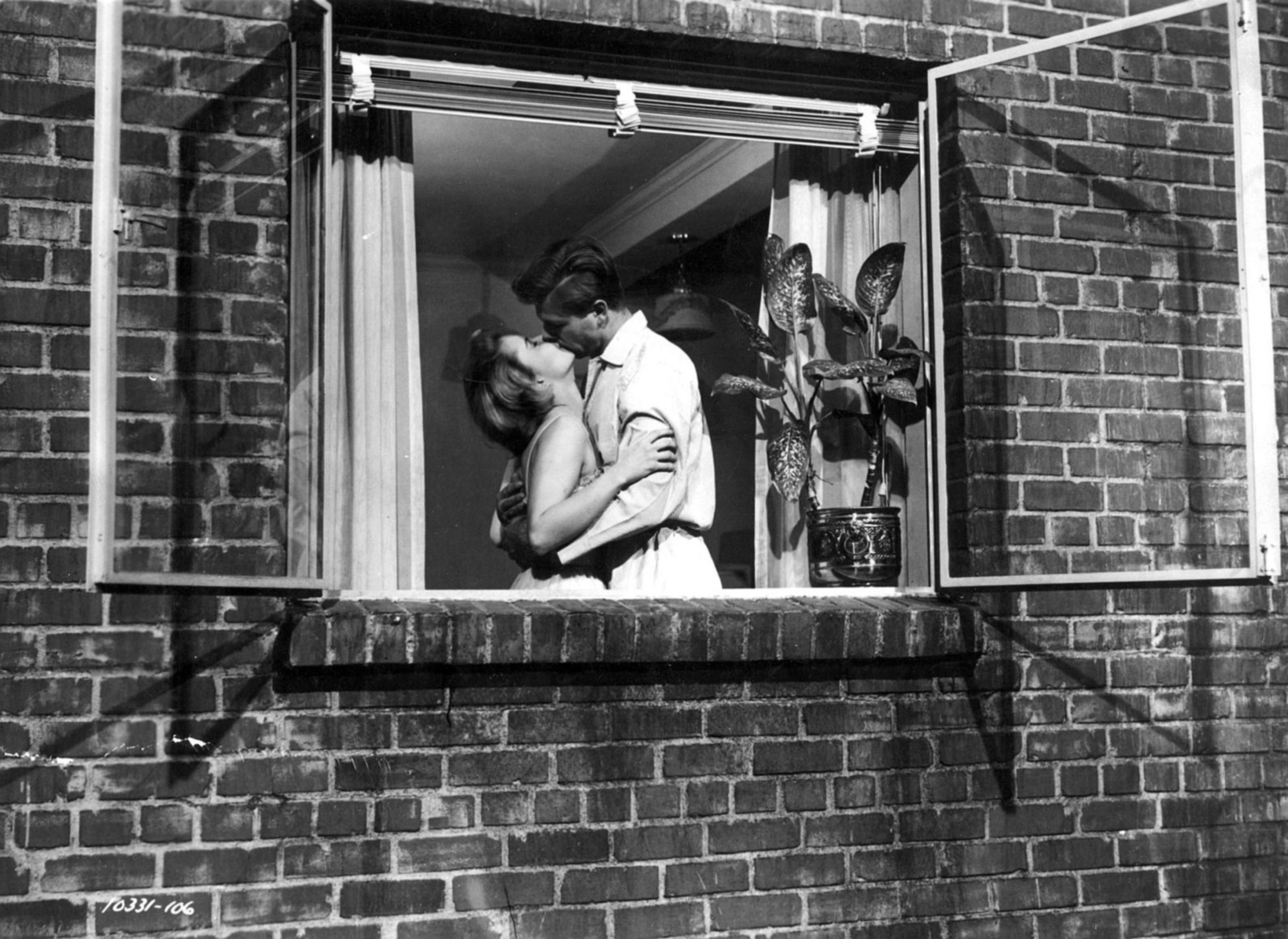 analysis of themes in rear window
