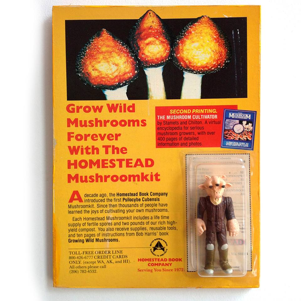 Magic mushroom action figure
