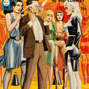"""100+ Sleazy """"Swapping"""" Books of the 1960s and 70s"""