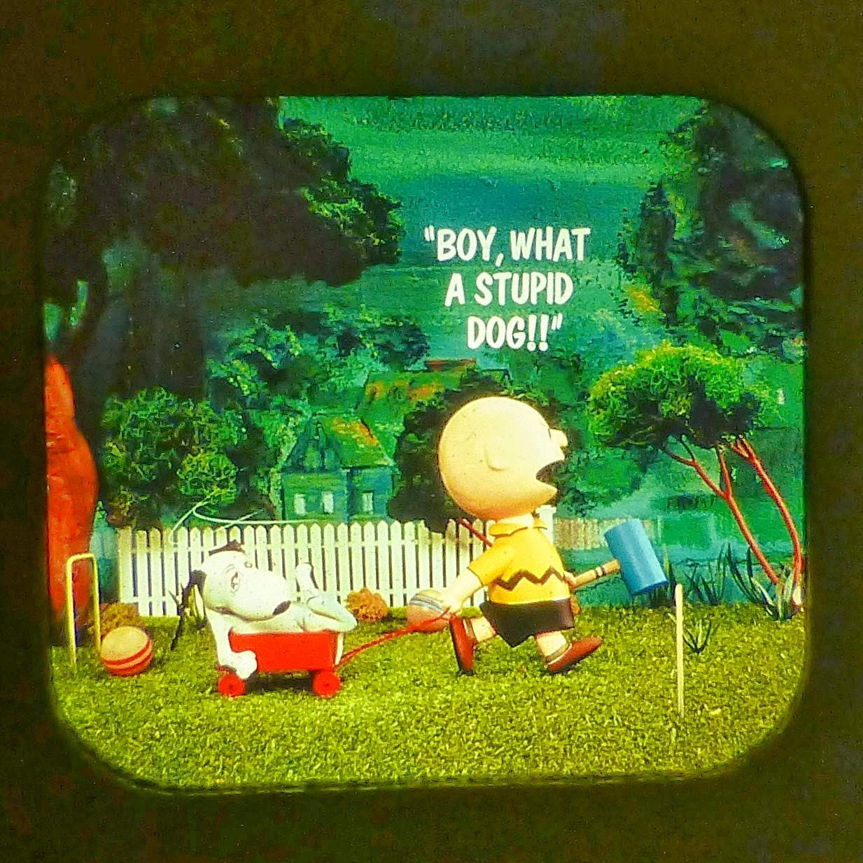 CHARLIE BROWN'S SUMMER FUN VIEW MASTER SCANS