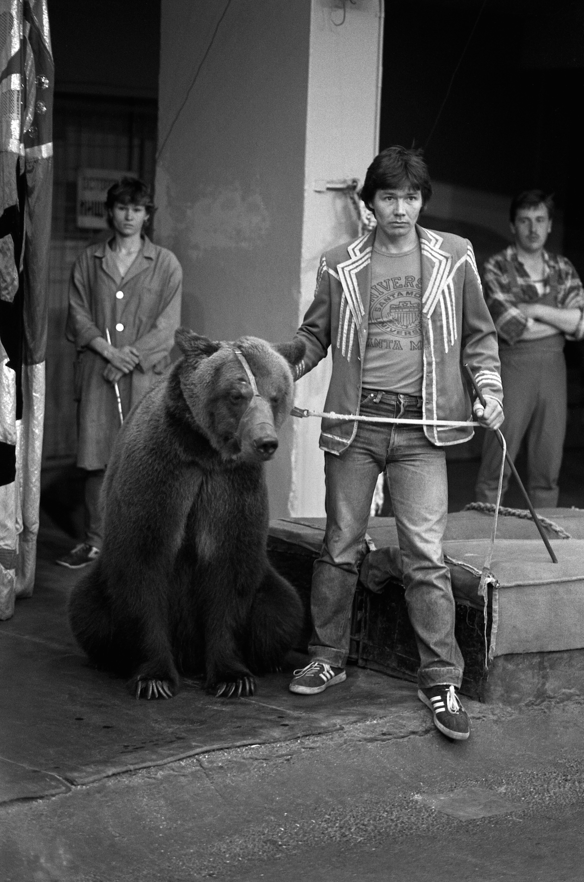 Bear in Moscow Circus
